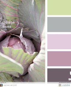 cabbage hues, love this palette from design seeds Mint Color Schemes, Color Combos, Colour Pallette, Color Palate, Design Seeds, Palette Pastel, Colour Board, Bedroom Colors, Bedroom Ideas