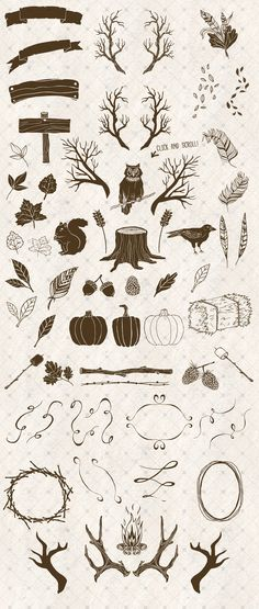 Rustic Autumn Vector Illustrations by Fire Spark Studios on Creative Market