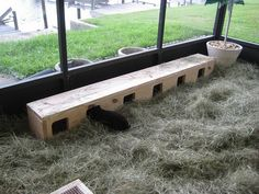 Great idea to encourage some natural bunny behaviour. Pic: Rabbitats.org