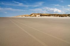 beach north sea