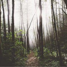 folklifestyle:  Photo by @bertymandagie #photography #outdoors wilderness really inspiring nature shot