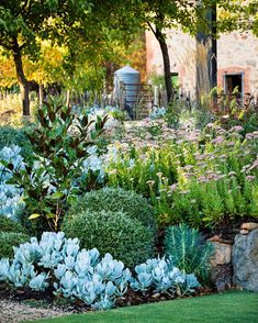 Recycling and starting small can lead to big things in the hands of a passionate gardener.