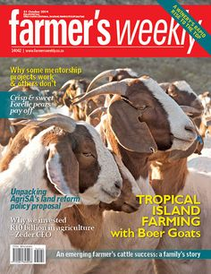 31 October Farming with Boer Goats on the island of Réunion. Agricultural Sector, Boer Goats, Agriculture Farming, Animals And Pets, October 2014, Magazine, Digital, Windows 8, Farmers
