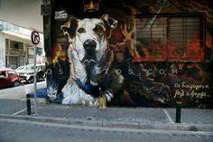 Street Dogs, Pet Shop, Street Art, Culture, Canvas, Pets, Animals, Acrylic Paintings, Greece