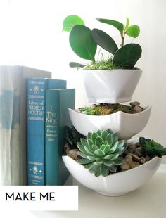 Stacked indoor garden. DIY  I need to do this with my succulents.