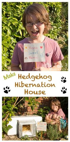 Hedgehogs numbers are declining! How about lending Nature a helping hand and making a Hedgehog House for these adorable creatures? Hedgehog Hibernation, Hedgehog Craft, Hedgehog House, Outdoor Activities For Kids, Fun Activities, Weather Activities, Outdoor Learning, Autumn Activities, Autumn Crafts