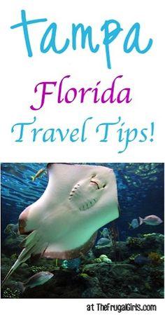 Tampa, Florida Insider Travel Tips
