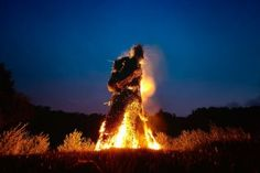 The wicker man burning at Butser for Beltane
