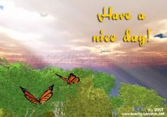 good day photos | flying butterflies; god rays; light of happiness; nice sunny day