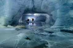 glacier explorers - Google Search