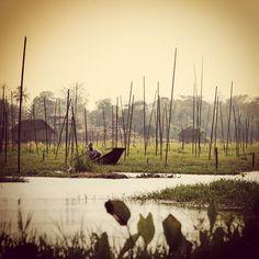 Amazing floating vegetable farms on Inle Lake, Myanmar.   ••••••••••••••••••••••••••••••••••••••••• WorldlyNomads.com •••••••••••••••••••••••••••••••••••••••••