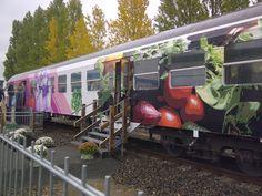 "Kimba - Express ""Berliner Tafel"""