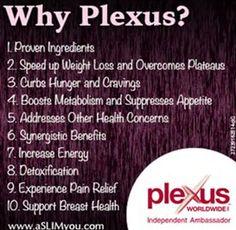 Image result for Plexus
