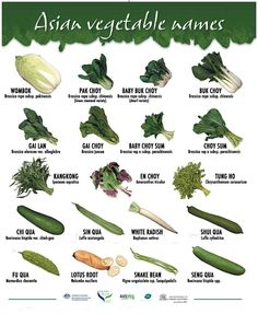 types of green vegetables * types vegetables . types of vegetables . root vegetables types of . types of vegetables chart . different types of vegetables . types of green vegetables . types of green leafy vegetables . types of asian vegetables Green Vegetables Name, List Of Vegetables, Chinese Vegetables, Fruits And Veggies, Chinese Greens, Chinese Cabbage, Asian Cooking, Cooking Tips, Cooking Recipes