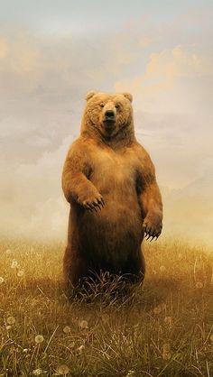 bear_field_flowers_walk_brown_25907_640x1136 | vadaka1986 | Flickr Cut Animals, We Bear, Bear Pictures, Baby Goats, Bear Art, Tier Fotos, Woodland Creatures, Wildlife Art, Brown Bear