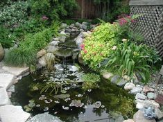 DIY pond, stream and waterfall