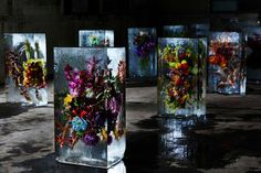 Suspends Flowers in Ice | Azuma Makota #flowers #flowersinstallation #installation #icecube #ice #azumamakota #art #floralart
