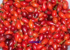 The perfect canning: rosehip jam recipe with simple step-by-step instructions: So first comes the collecting. For that you grab … Healthy Eating Tips, Healthy Nutrition, Healthy Recipes, Healthy Food, Chutneys, Rosehip Jam Recipe, Marmalade Recipe, Jam Recipes, French Recipes