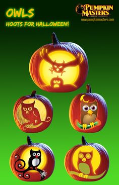 Owls - hoots for Halloween from Pumpkin Master's carving kits. Halloween 2019, Halloween Stuff, Halloween Pumpkins, Fall Halloween, Halloween Crafts, Halloween Ideas, Holiday Crafts, Holiday Fun, Halloween Decorations