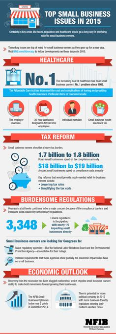 Infographic: Top Small Business Issues in 2015 | National Federation of Independent Business #SmallBiz