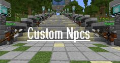 The Costum NPCs mod adds many new items and features. While it works primarily for singleplayer, it is multiplayer enabled. The tools are used to create new NPCs