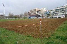 Τον δικό του αμπελώνα φτιάχνει ο δήμος Θεσσαλονίκης Tin, Soccer, Sports, Hs Sports, Football, European Football, Sport, Soccer Ball, Futbol