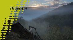 Was für sie ganz persönlich das Besondere am Nationalpark Thayatal ist, darüber geben die Mitarbeiter des Nationalparks einen kurzen Einblick in diesem Video. Mit Landwirt Martin Schaden, Claudia Wurth-Waitzbauer, zuständig für Umweltbildung und Forschung im Nationalpark und Robert Brunner, der bis Ende 2013 Direktor des Nationalparks Thayatal war. Nationalparks, Research, Nature, Pictures