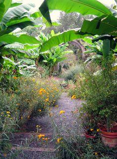 Love the jungle theme