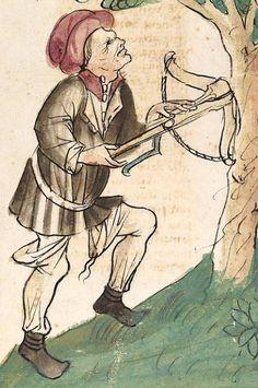 Konrad von Megenberg Das Buch der Natur — Hagenau - Werkstatt Diebold Lauber, um 1442-1448? Cod. Pal. germ. 300 Folio 134v