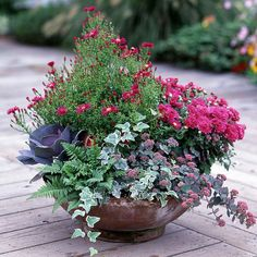 Use this collection of recipes to create lush beautiful container gardens to accent your landscape all season long. Use this collection of recipes to create lush beautiful container gardens to accent your landscape all season long. Container Flowers, Container Plants, Container Gardening, Gardening Tools, Vegetable Gardening, Wood Fern, Jardin Decor, Fall Containers, Succulent Containers