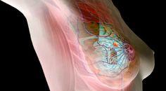 Cancro: Nanopartícula portuguesa patenteada nos EUA