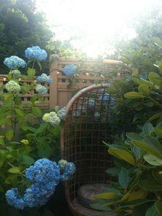 Secret Garden reading nook.