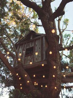 Fancy tree houses