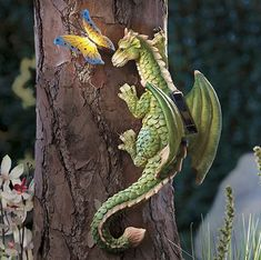 Dragon and butterfly