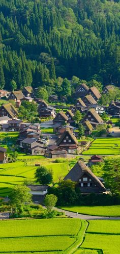 Wonderful Places in Shirakawa-Go (Japan) Places To Travel, Places To See, Wonderful Places, Beautiful Places, Shirakawa Go, Japan Summer, Adventures Abroad, Japan Travel Guide, Culture Travel