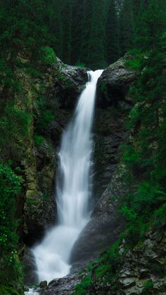 Water current, waterfall, green forest, nature, 720x1280 wallpaper