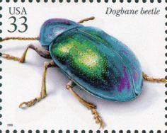 Iridescent dogbane beetle postage stamp