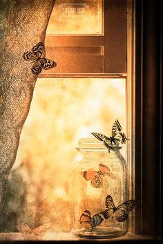 """""""Literature and butterflies are the two sweetest passions known to man."""" ― Vladimir Nabokov"""