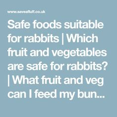 Safe foods suitable for rabbits | Which fruit and vegetables are safe for rabbits? | What fruit and veg can I feed my bunny?