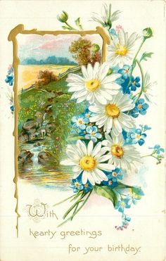 WITH HEARTY GREETINGS FOR YOUR BIRTHDAY white yellow centred daisies, forget-me-nots right, rural inset gi