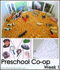 Farm unit for preschool with sensory bin and pre-writing ideas.  I like the popcorn sensory bin.