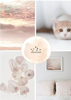 moodboard - free your mind