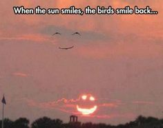the world smiles with us - Funny memes hilarious - Stupid Funny Memes, Funny Animal Memes, Funny Relatable Memes, Funny Texts, Funny Animals, Funniest Memes, Funny Stuff, Animal Captions, Animal Jokes