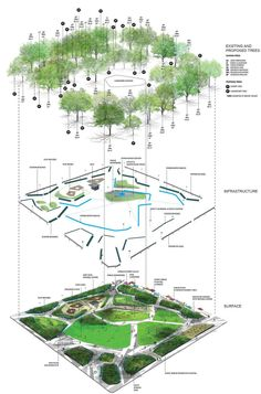 The layers of a landscape by Christopher Counts Studio for Moore Square Master Plan Raleigh, North Carolina, USA.