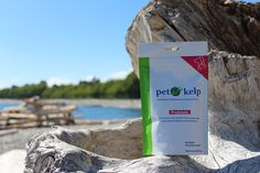 Pet Kelp vitamins & supplements for dogs and cats combine nutrient rich powdered kelp with antioxidants, omegas to help your dog or cat live their best life.