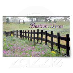 Wildflower by Fence, Bastrop, Texas Sticker from Zazzle.com