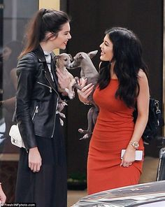 A helping paw: Besides each other, the pair also had some furry support with Kylie's dogs,...