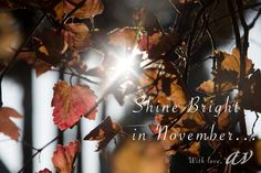 Have a wonderful November! With love, Anneke Veronica Photography