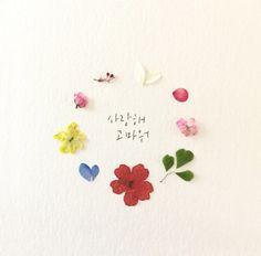 봄꽃 분위기 나는 사진 : 네이버 블로그 Flower Words, Flower Art, Painting Logo, Korean Quotes, Plant Drawing, Best Comments, Fantastic Art, Aesthetic Iphone Wallpaper, Emoticon