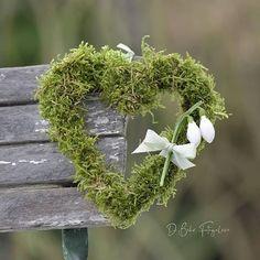 3 134 mentions J'aime, 156 commentaires – Daniela Behr ( … Spring Wedding Flowers, Bridal Flowers, Hand Flowers, Diy Flowers, Behr, Flower Model, Fleurs Diy, Ideas Prácticas, Groom Boutonniere